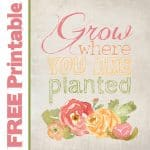 FREE PRINTABLE - Grow where you are planted