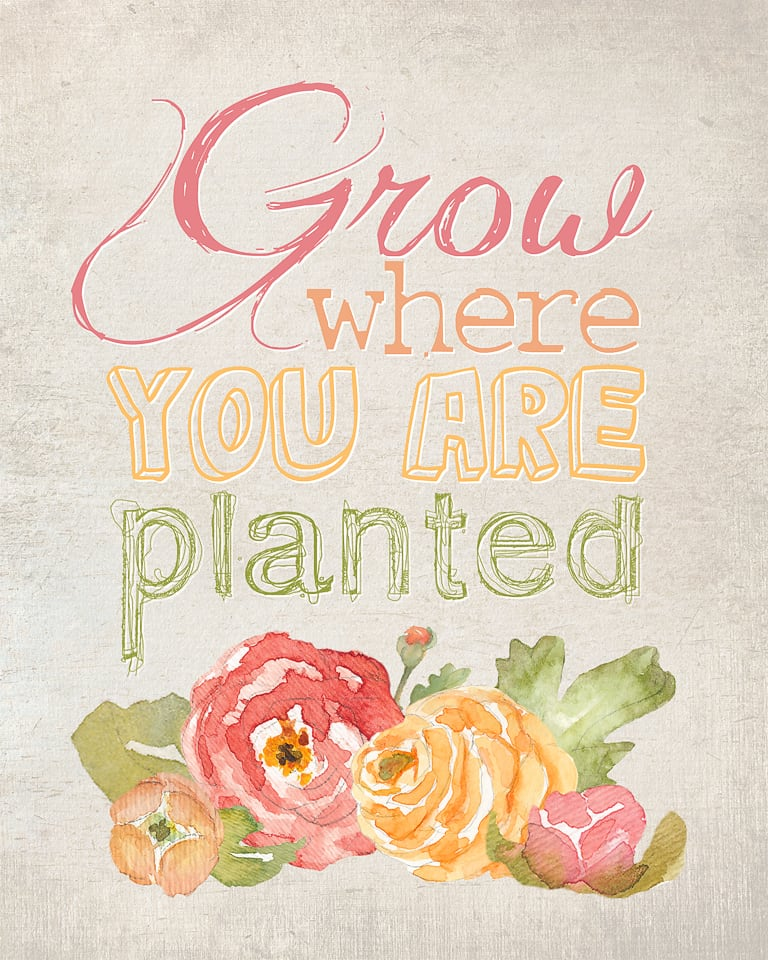 Grow where you are planted - free printable