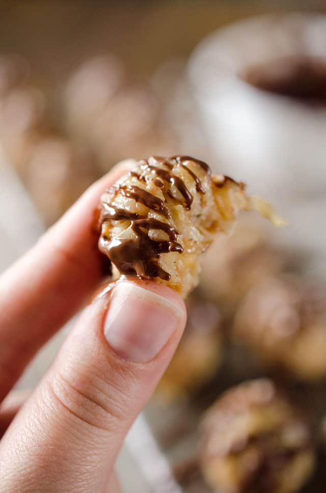 Coconut Macadamia Bites