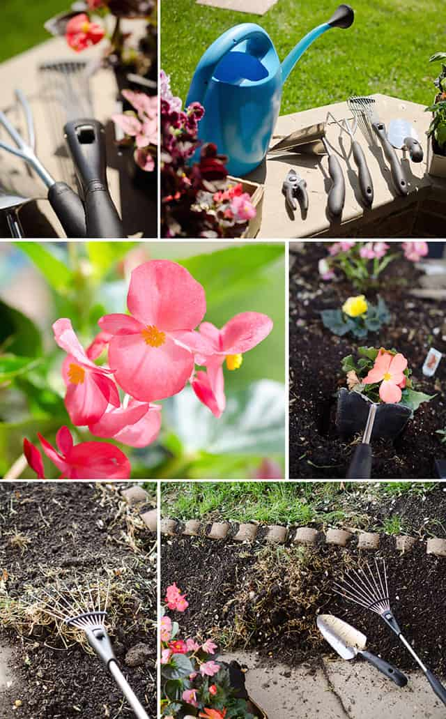 spring flower and herb gardening with OXO