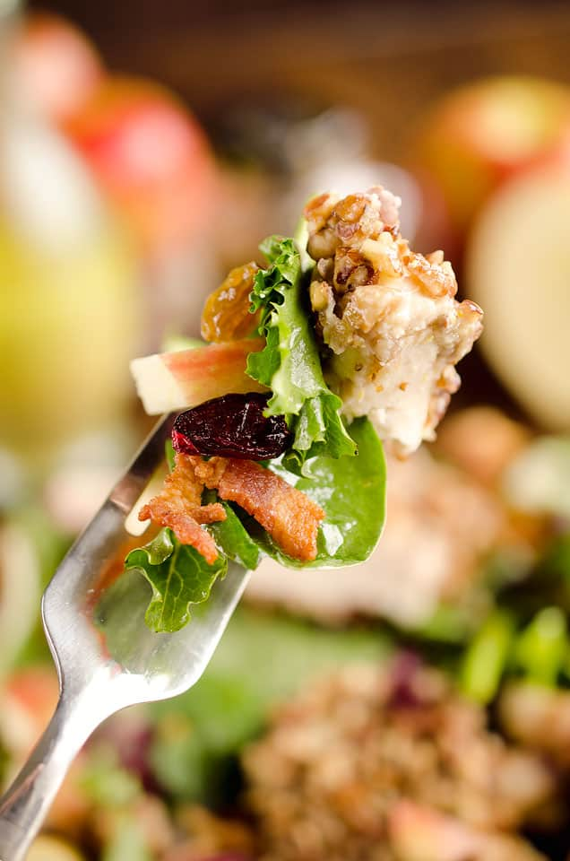 Harvest Salad with Pecan Crusted Chicken is full of great fall flavors including dried cranberries, golden raisins, bacon, chopped apples and a tender chicken breast crusted with toasted pecans.