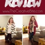 December 2015 XL Stitch Fix Review