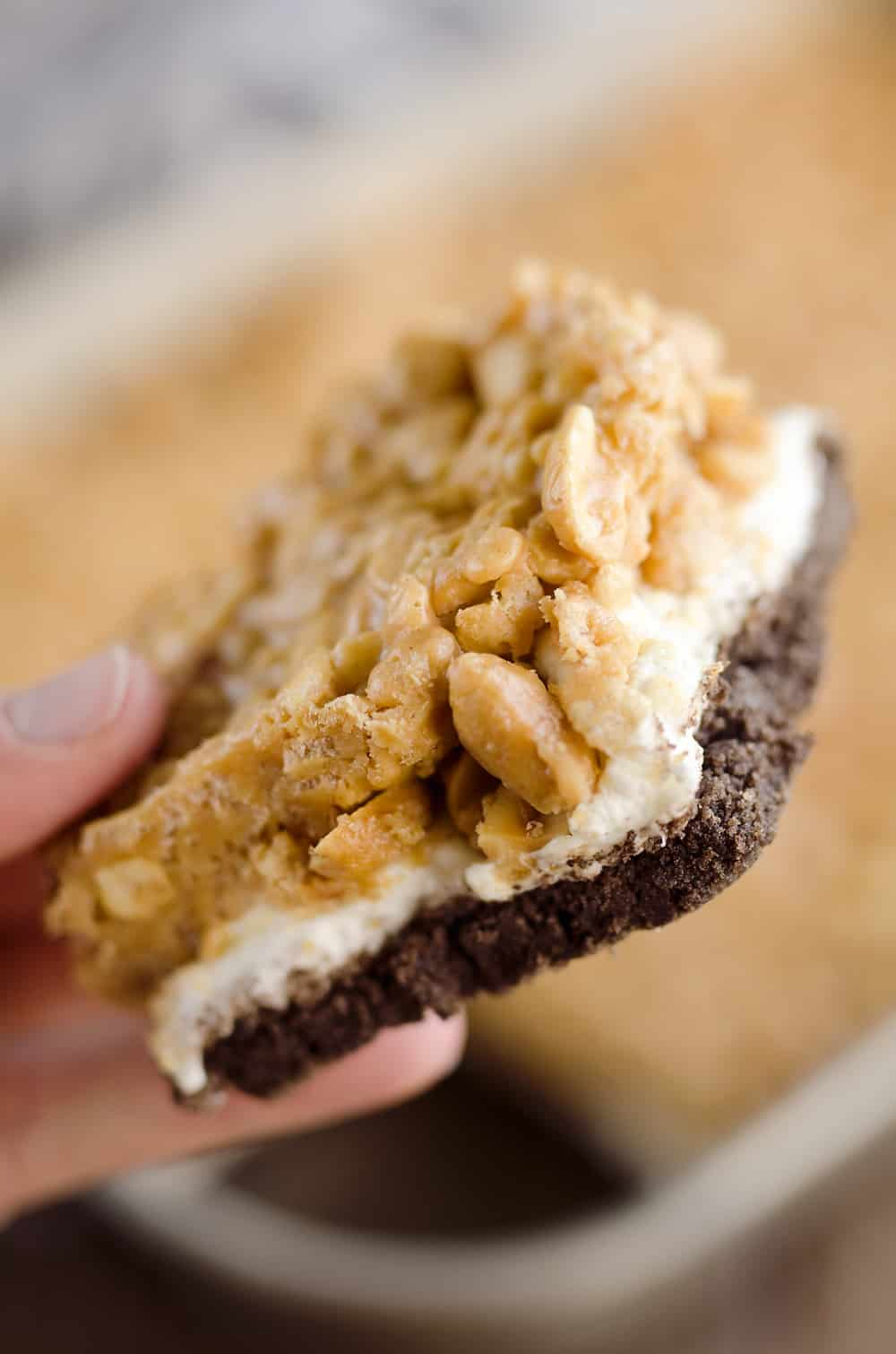 Crunchy Peanut Butter Marshmallow Bars are a sweet and salty dessert everyone will love! A chocolate crust is topped with marshmallows and a crunchy peanut butter and rice crispie mixture for a delicious treat.