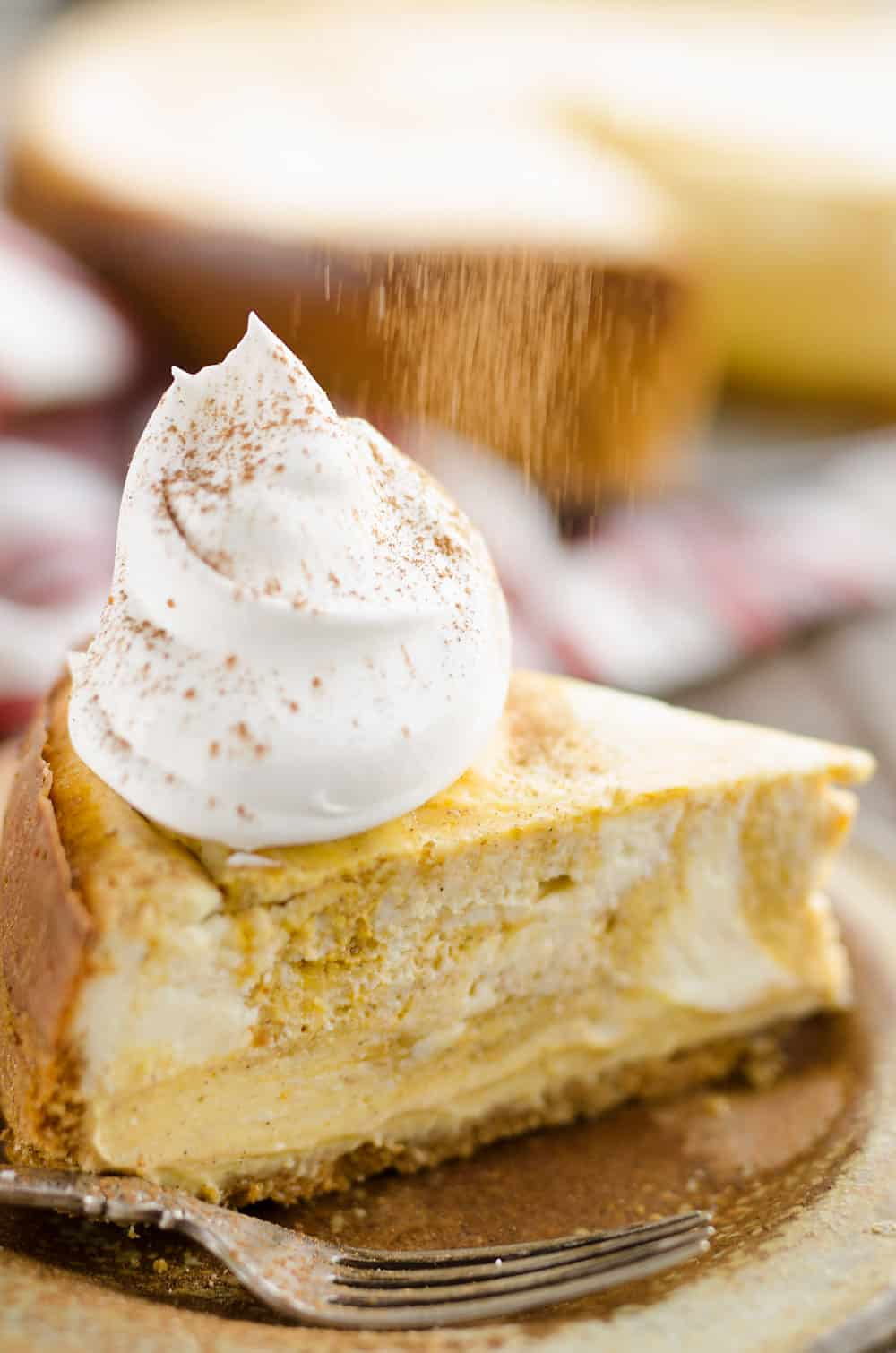 Pumpkin Swirl Cheesecake with cinnamon dusting