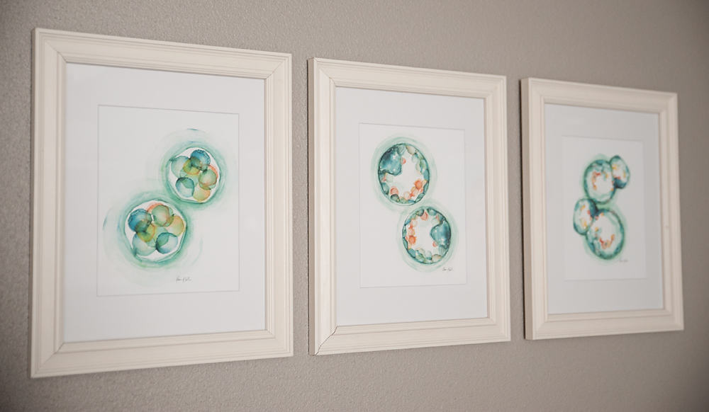Boy Girl Gender Neutral Twin Bunny Nursery Reveal - IVF Embryo Watercolor Artwork