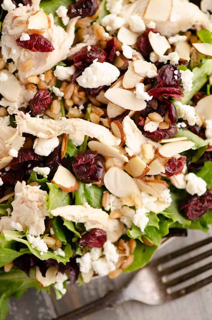 Cranberry Farro Chicken Salad served on plate