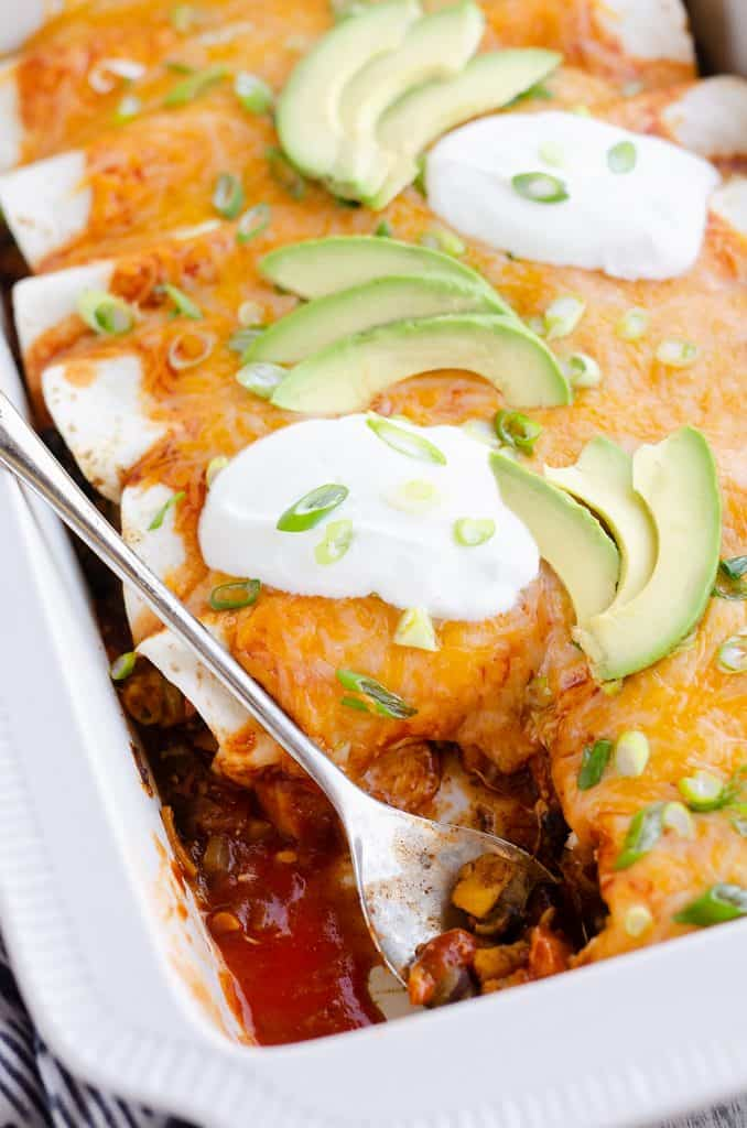 Black Bean & Squash Vegetarian Enchiladas served from pan
