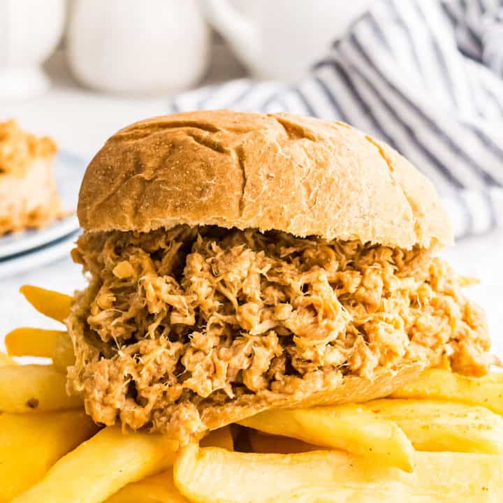 pulled pork sandwich with homemade fries