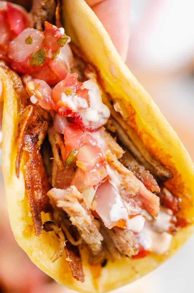 hand holding pork carnitas taco with chipotle lime sour cream
