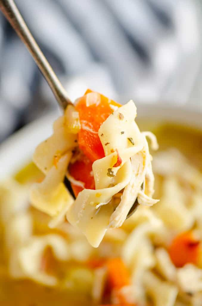 spoonful of Greek chicken noodle soup